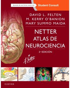 Netter. Atlas de neurociencia